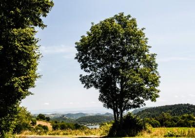 Auvergne 2012-3